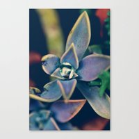 gem Canvas Prints featuring Gem by Purdypowny