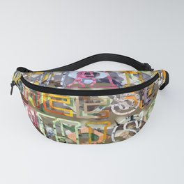 WHAT'S THIS? 13 Fanny Pack