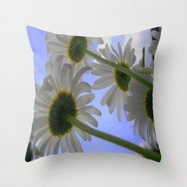 Fowers Daisy Days Throw Pillow