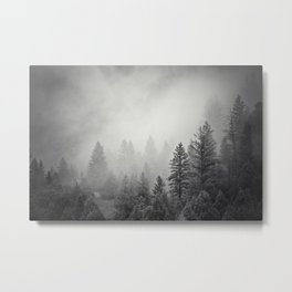 Pines in Fog | Black and White Landscape Metal Print