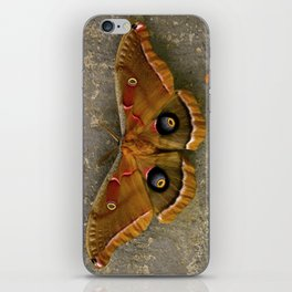 The Art of Nature iPhone Skin
