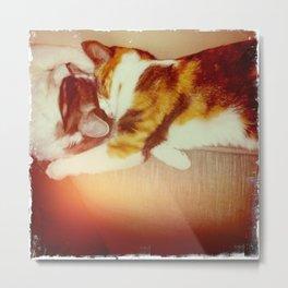 Kitty Love Metal Print