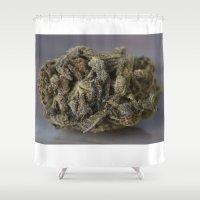 medical Shower Curtains featuring Bordello Medicinal Medical Marijuana by BudProducts.us