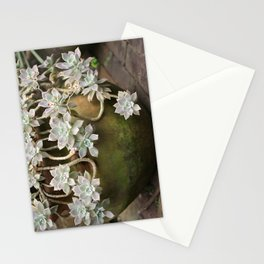 Ghost plant 2 Stationery Cards