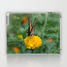 Marigolds and Butterfly Laptop & iPad Skin