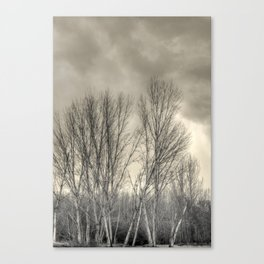 The long winter #2 Canvas Print