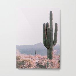 Arizona Cactus 3 Metal Print