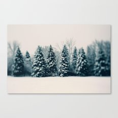 Winter & Woods Canvas Print