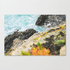 The sea and the color Canvas Print