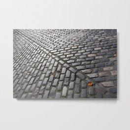 Leaves on cobblestones Metal Print
