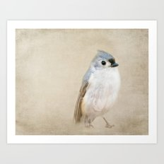 Bird Little Blue Art Print