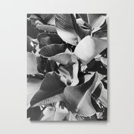 Natural Background 67 Metal Print