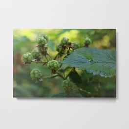 Green Berries Metal Print