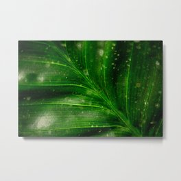 Seeing Green Metal Print