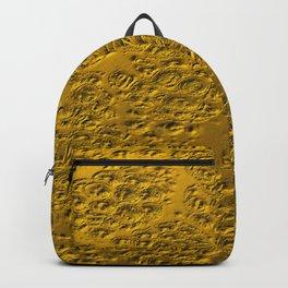 Damaged gold Backpack
