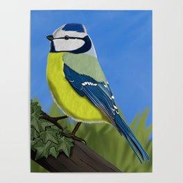jz.birds Blue tit Bird Design Poster