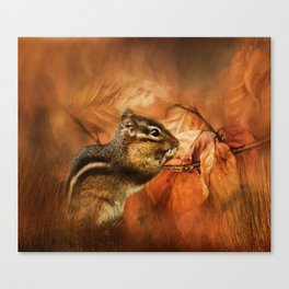 Chipmunk Autumn Canvas Print
