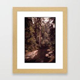 CALIFORNIA NEAR KLAMATH Framed Art Print
