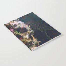Kingdom Notebook