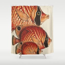 Fish Classic Designs 2 Shower Curtain