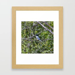 Bad Hair Day! Framed Art Print