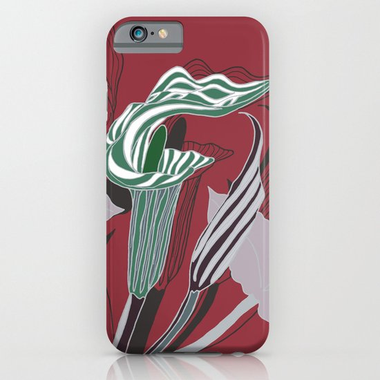 Arum Lilies IV. iPhone & iPod Case
