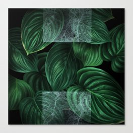 tropical green pattern on black Canvas Print