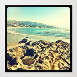 Birds at the beach. Canvas Print