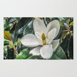 Soft Magnolia Rug