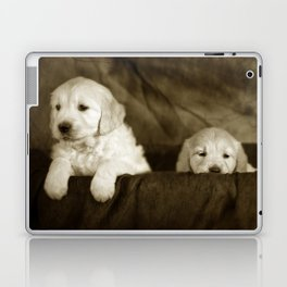 Labrador puppies Laptop & iPad Skin