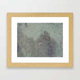 Aerial Swim Framed Art Print