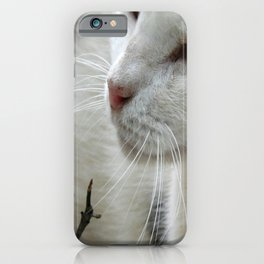Close Up Of A Piebald Cat iPhone Case