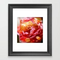 Magical Peony Framed Art Print