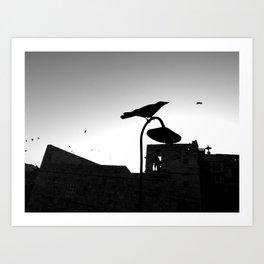 Rishikesh birdie Art Print