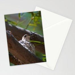 Hummingbird Momma Stationery Cards