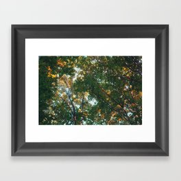 look up 03 Framed Art Print