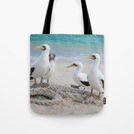 Masked Boobies on a beach Tote Bag