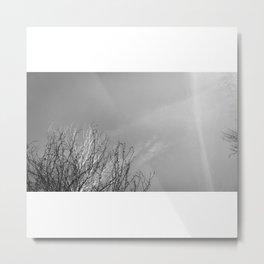 Creación#1 Metal Print