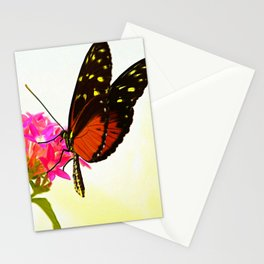 Tiger Longwing Butterfly Stationery Cards