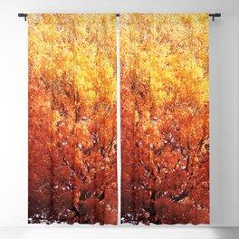 Burning Tree Blackout Curtain