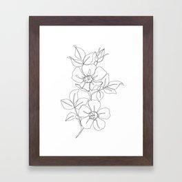 Floral one line drawing - Rose Framed Art Print