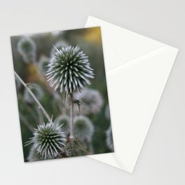 Macro Seed Head of Round Headed Garlic  Stationery Cards
