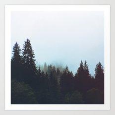 Washington Woodlands Art Print