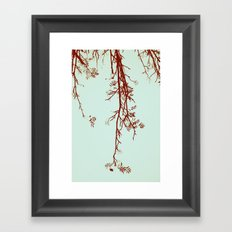 Delicate like breeze Framed Art Print