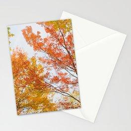 Autumn Confetti Stationery Cards