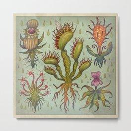Carnivorous plants Metal Print