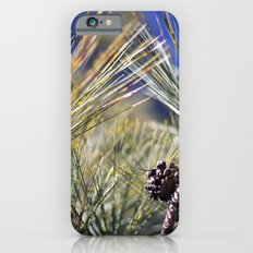 Pine iPhone 6s Slim Case