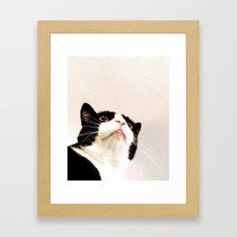 Curiosity and the Scheming That Comes After Framed Art Print