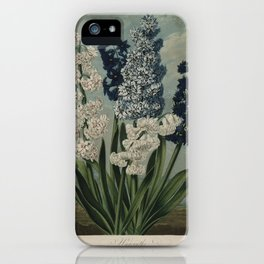 Edwards, S. (1768-1819) - The Temple of Flora 1807 - Hyacinths iPhone Case