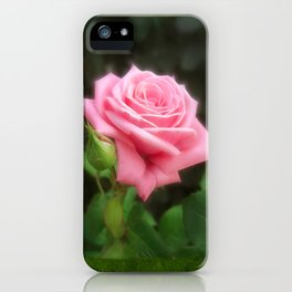 Pink Roses in Anzures 3 Blank P1F0 iPhone Case